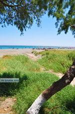 Frangokastello | Chania Kreta | Foto 44 - Foto van De Griekse Gids