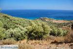 Zuid Kreta aan de grens van departement Chania-Rethymnon | Foto 4 - Foto van De Griekse Gids