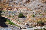 Ano en Kato Rodakino |Rethymnon Kreta | Foto 18 - Foto van De Griekse Gids