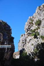 Kotsifos Kloof | Rethymnon Kreta | Foto 23 - Foto van De Griekse Gids