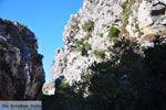 GriechenlandWeb Kotsifos Kloof | Rethymnon Kreta | Foto 24 - Foto GriechenlandWeb.de