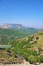 Natuur Centraal Rethymnon Kreta | De Griekse Gids foto 6 - Foto van De Griekse Gids