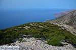 GriechenlandWeb.de Koudoumas Kreta - Departement Heraklion - Foto 18 - Foto GriechenlandWeb.de