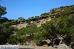 GriechenlandWeb.de Koudoumas Kreta - Departement Heraklion - Foto 46 - Foto GriechenlandWeb.de