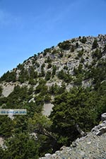 Koudoumas Kreta - Departement Heraklion - Foto 87 - Foto van De Griekse Gids