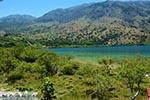 Kournas Kreta - Departement Chania - Foto 26 - Foto van De Griekse Gids