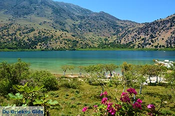 Kournas Kreta - Departement Chania - Foto 39 - Foto van De Griekse Gids
