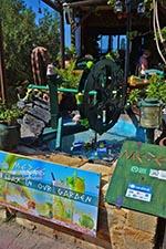 Koutouloufari Kreta - Departement Heraklion - Foto 10 - Foto van De Griekse Gids