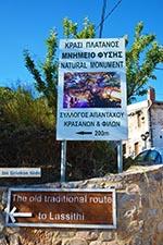 Krasi Kreta - Departement Heraklion - Foto 1 - Foto van De Griekse Gids