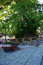Krasi Kreta - Departement Heraklion - Foto 10 - Foto van De Griekse Gids
