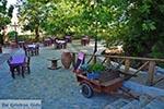 Krasi Kreta - Departement Heraklion - Foto 11 - Foto van De Griekse Gids