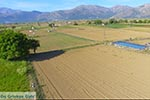Lassithi hoogvlakte Kreta - Departement Lassithi - Foto 8 - Foto van De Griekse Gids