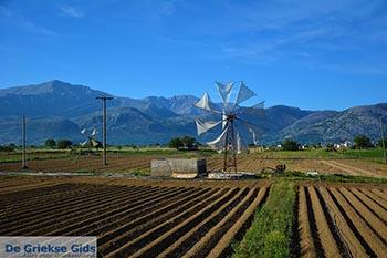 Lassithi hoogvlakte Kreta - Departement Lassithi - Foto 12 - Foto van De Griekse Gids
