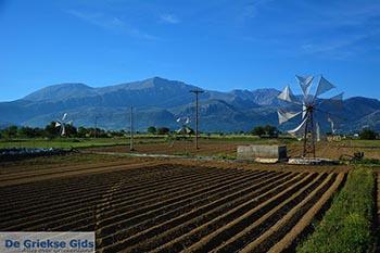 Lassithi hoogvlakte Kreta - Departement Lassithi - Foto 13 - Foto van De Griekse Gids