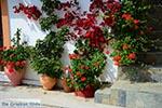 Melambes Kreta - Departement Rethymnon - Foto 13 - Foto van De Griekse Gids