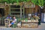 Oud-Chersonissos Kreta - Departement Heraklion - Foto 16 - Foto van De Griekse Gids