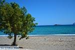 Pachia Ammos Kreta - Departement Lassithi - Foto 19 - Foto van De Griekse Gids