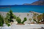 GriechenlandWeb.de Pachia Ammos Kreta - Departement Lassithi - Foto 26 - Foto GriechenlandWeb.de