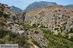 GriechenlandWeb.de Preveli beach Kreta - Departement Rethymnon - Foto 12 - Foto GriechenlandWeb.de