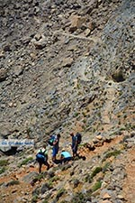 Sfakia Kreta - Departement Chania - Foto 33 - Foto van De Griekse Gids