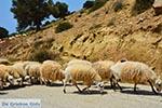 Triopetra Kreta - Departement Rethymnon - Foto 1 - Foto van De Griekse Gids