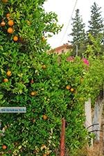 Varipetro Kreta - Departement Chania - Foto 25 - Foto van De Griekse Gids