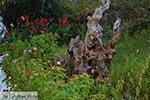 Agios Nikitas - Eiland Lefkas -  Foto 46 - Foto van De Griekse Gids