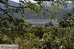 Desimi - Eiland Lefkas -  Foto 12 - Foto van De Griekse Gids