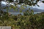 Desimi - Eiland Lefkas -  Foto 13 - Foto van De Griekse Gids