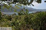 Desimi - Eiland Lefkas -  Foto 14 - Foto van De Griekse Gids