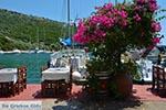 Syvota - Eiland Lefkas -  Foto 29 - Foto van De Griekse Gids