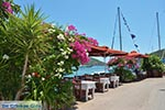 GriechenlandWeb.de Syvota - Insel Lefkas -  Foto 43 - Foto GriechenlandWeb.de