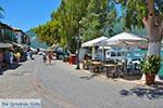 Vassiliki - Eiland Lefkas -  Foto 27 - Foto van De Griekse Gids