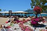 Vassiliki - Eiland Lefkas -  Foto 32 - Foto van De Griekse Gids