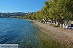 Alinda - Eiland Leros - Griekse Gids Foto 20 - Foto van De Griekse Gids