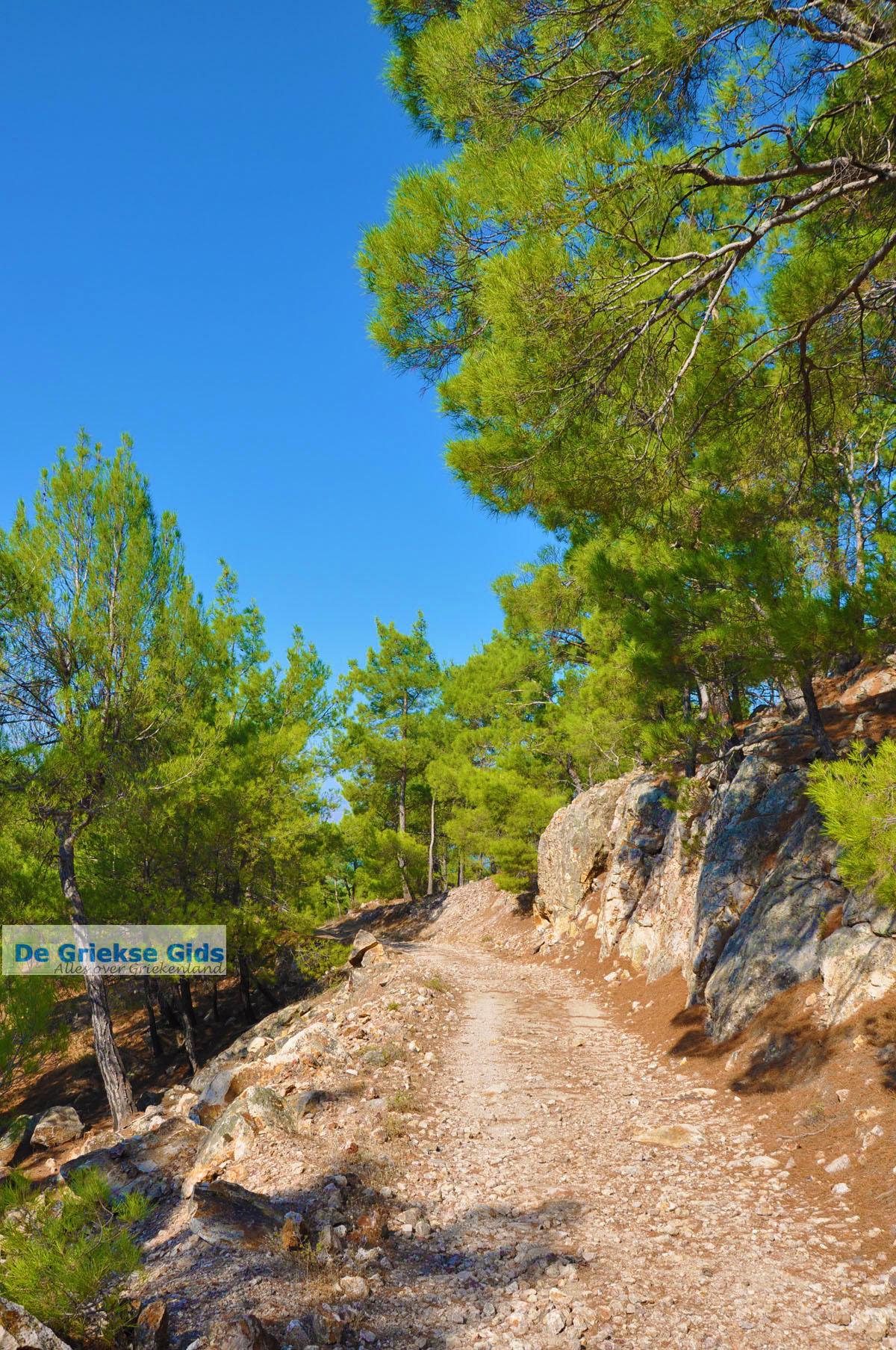 foto Bij watervallen Pesas   Lesbos Griekenland   De Griekse Gids 8