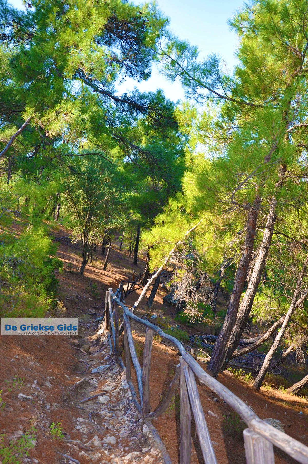 foto Bij watervallen Pesas | Lesbos Griekenland 12