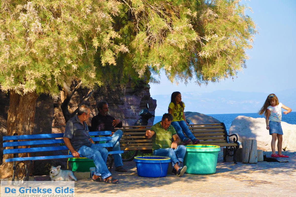 foto Sykaminia - Skala Sykaminia | Lesbos | De Griekse Gids 10