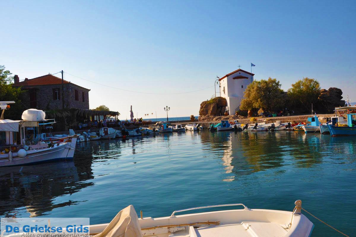 foto Sykaminia - Skala Sykaminia | Lesbos | De Griekse Gids 25