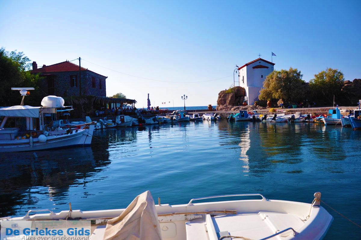 foto Sykaminia - Skala Sykaminia | Lesbos | De Griekse Gids 26