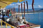 Molyvos Lesbos | Griekenland | De Griekse Gids 57 - Foto van De Griekse Gids
