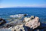 GriechenlandWeb.de Eftalou Lesbos | Griechenland | GriechenlandWeb.de 7 - Foto GriechenlandWeb.de