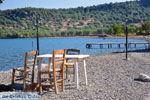 Bij Pyrra en Achladeri | Lesbos Griekenland | De Griekse Gids 6 - Foto van De Griekse Gids