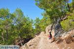 Bij watervallen Pesas | Lesbos Griekenland | De Griekse Gids 10 - Foto van De Griekse Gids