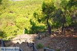 Bij watervallen Pesas | Lesbos Griekenland | De Griekse Gids 19 - Foto van De Griekse Gids