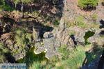 GriechenlandWeb Bij watervallen Pesas | Lesbos Griechenland | GriechenlandWeb.de 25 - Foto GriechenlandWeb.de