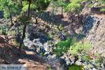 Bij watervallen Pesas | Lesbos Griekenland | De Griekse Gids 32 - Foto van De Griekse Gids
