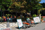 Agiasos (Agiassos) | Lesbos Griekenland | De Griekse Gids 15 - Foto van De Griekse Gids