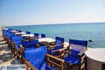 GriechenlandWeb.de Plomari | Lesbos Griechenland | GriechenlandWeb.de 25 - Foto GriechenlandWeb.de