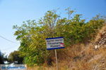 Plomari | Lesbos Griekenland | De Griekse Gids 36 - Foto van De Griekse Gids